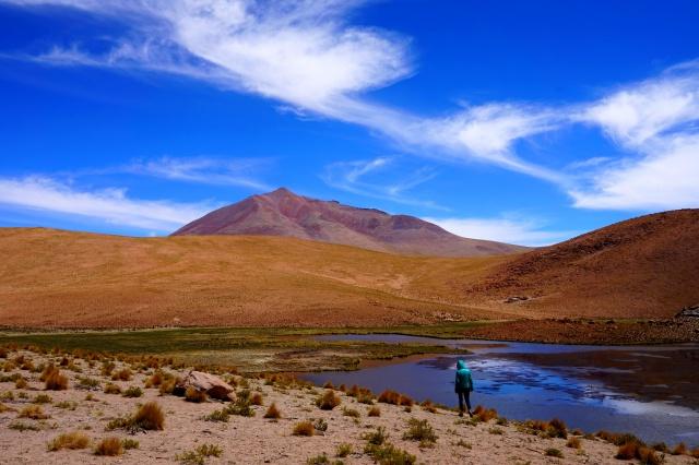 Missions scientifiques au Sud Lipez et au Salar d'Uyuni en Bolivie 547570cool3