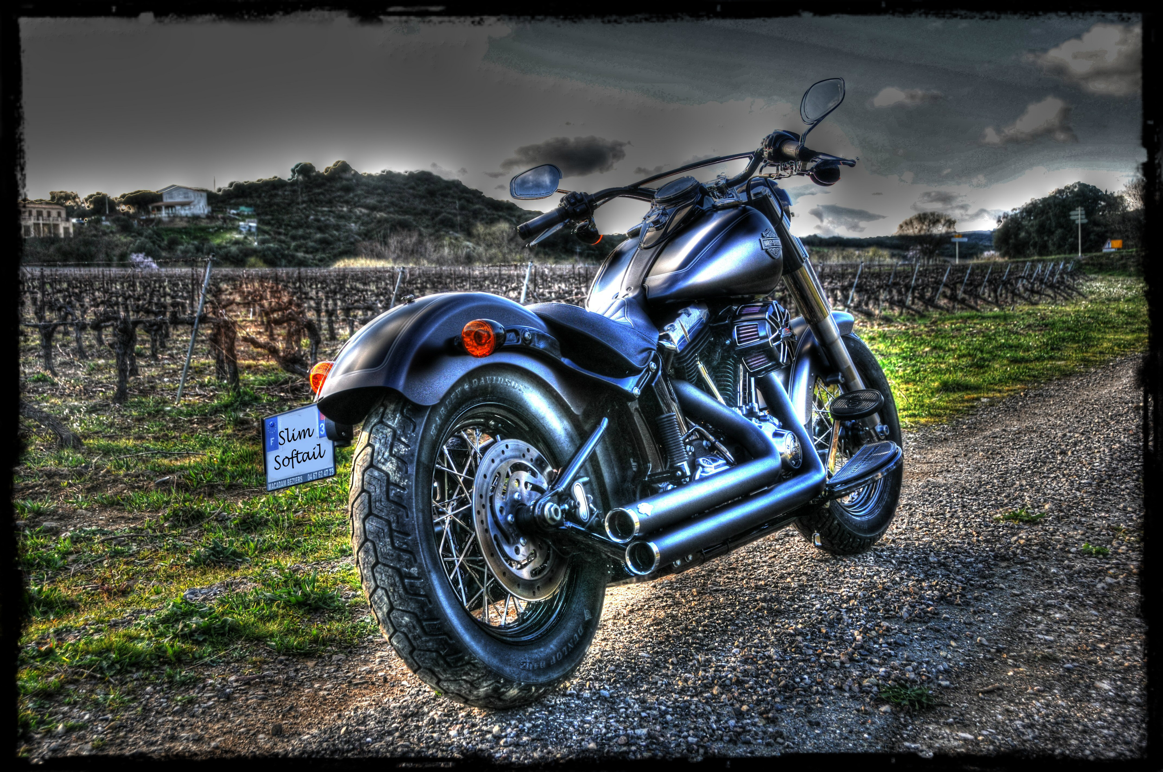 Softail Slim sous tous ses angles ! - Page 3 555887hdr2