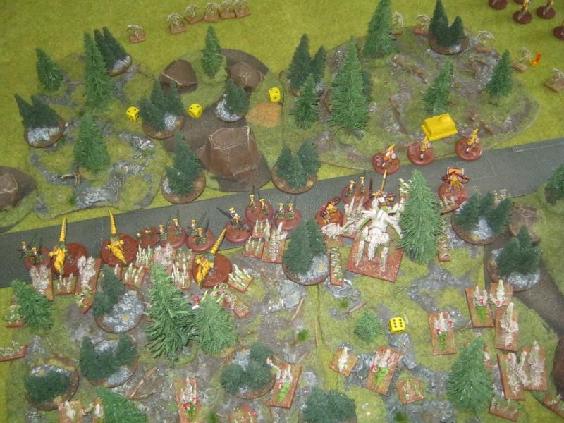 Assaut sur Zebra (campagne narrative) - Page 2 562349IMG0406
