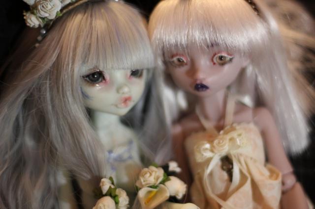 Delirium's Dolls~ Kinokojuice Haine P8 - Page 2 563851IMG3698