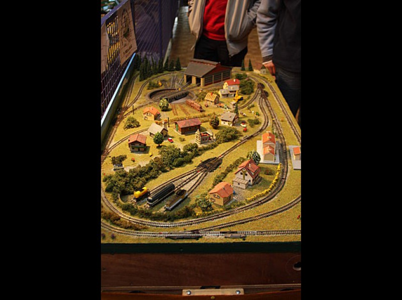 circuit ludique pour s'initier au train 565910TMBMONTELIRAIL20101617octobre001