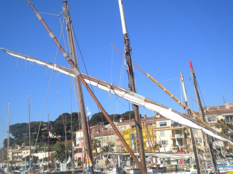 Mise en chantier d'une Bette provençale au 1/20 566136DSCN5292