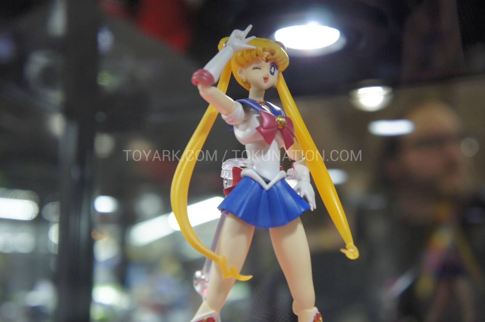 Sailor Moon (20th anniversary) 567034DSC37521360512597