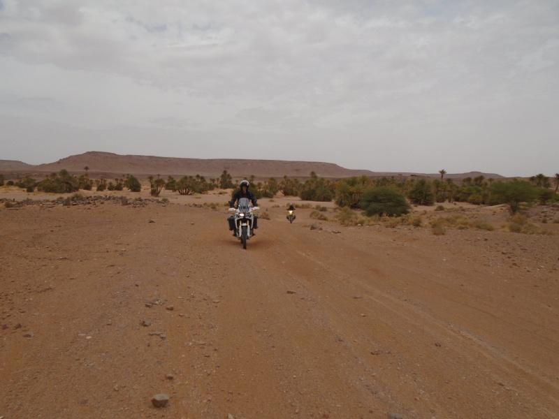 Maroc 2016 de Franck, Speedy et Maxou 569779DSC00495