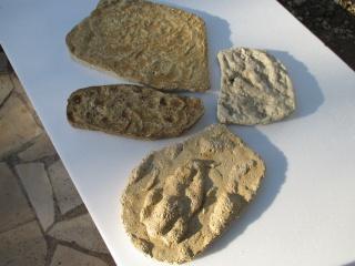 Encore quelques photos de pierres 572544IMG0071