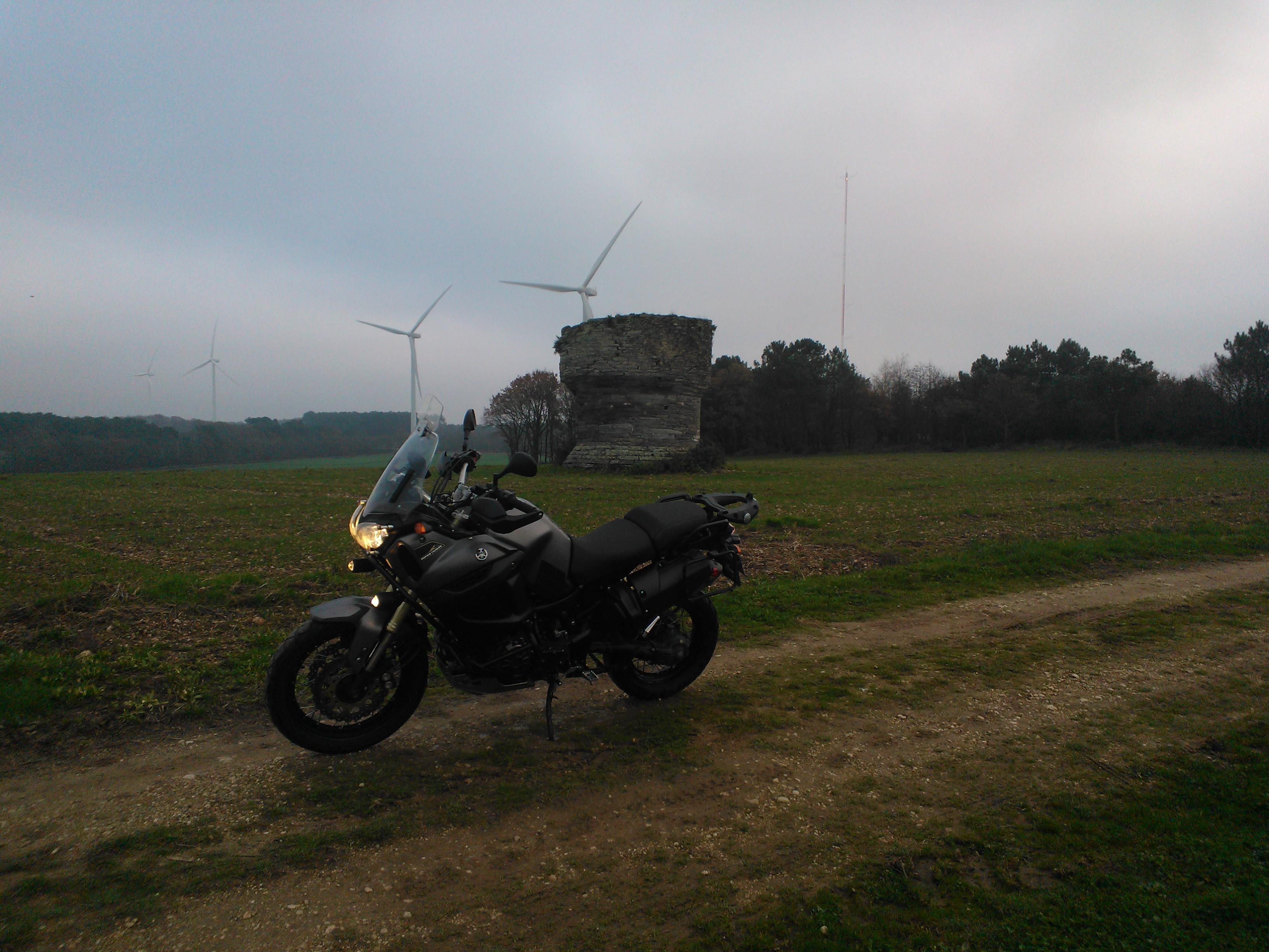 Balade dans les champs en Bretagne 578683WP20141130