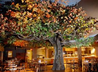 [The Anaheim Resort] Infrastructures publiques, hotels tiers, GardenWalk 584438gwl6