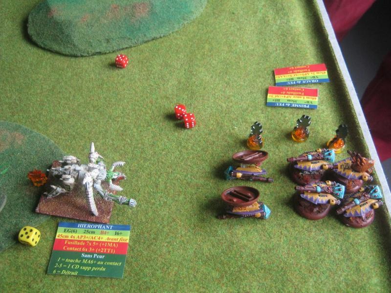 Assaut sur Zebra (campagne narrative) - Page 2 592244IMG0394