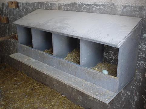 Quelques modèles de pondoirs pour nos poules 594689nestingbox