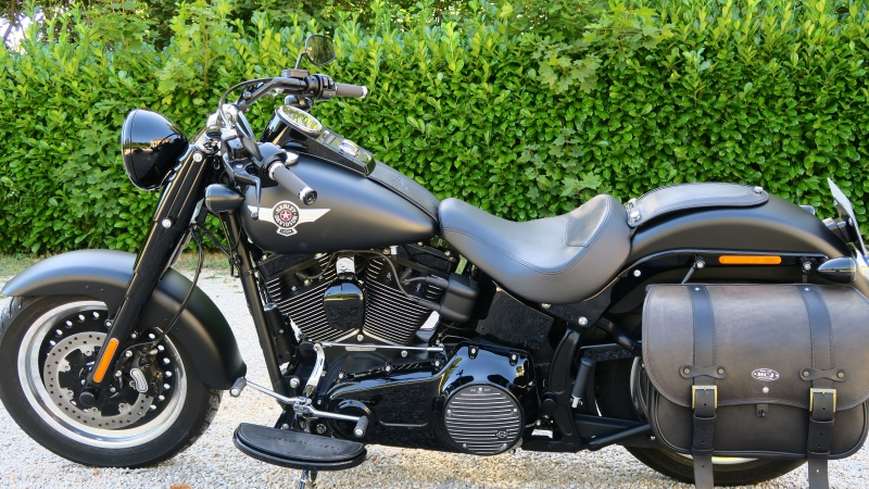 FATBOY S Changement de guidon - Page 2 597533IMG0503
