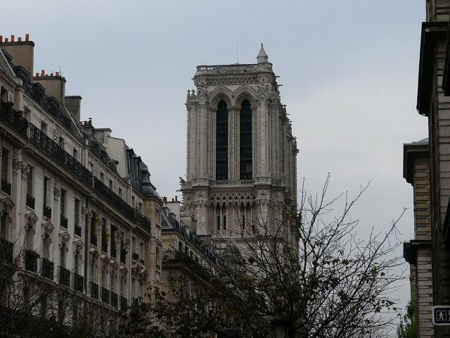 Notre dame de Paris 597779019