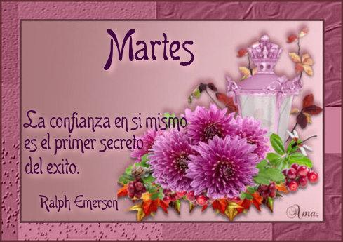 Flores con Frase 603591martes