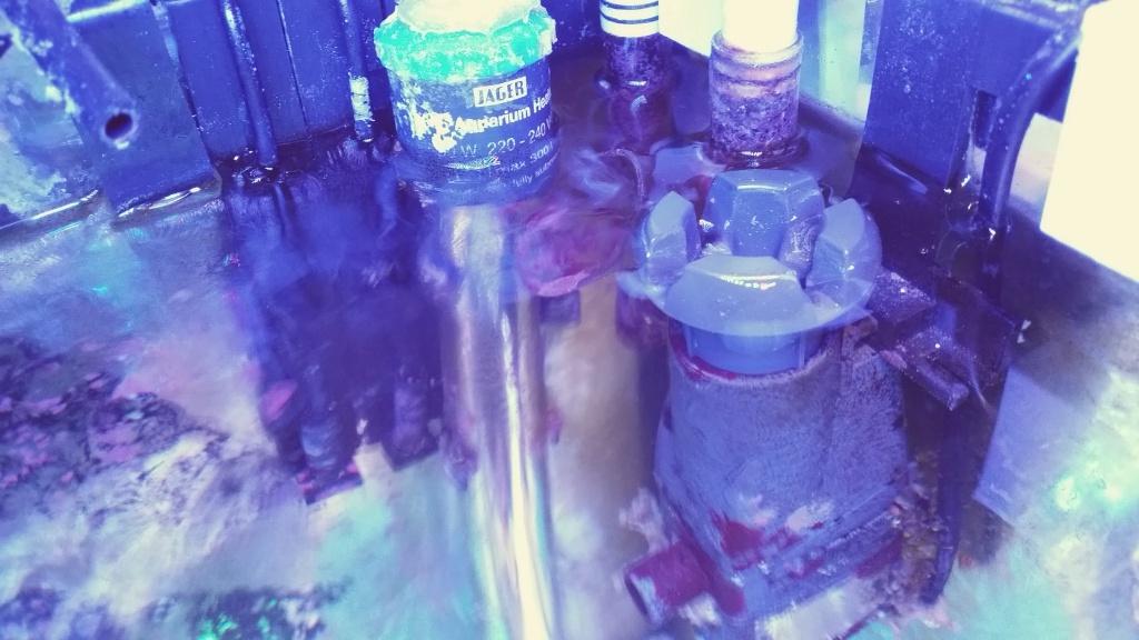 Mon cube de 125 litres autrefois berlinois dédié Montiporas! 60628020151213090505