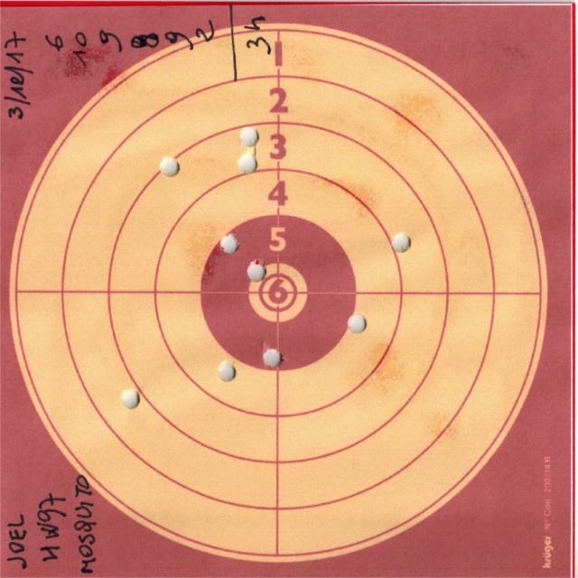 Tests plombs avec carabine Weihrauch HW97 BL 606777HW97UMAREXMOSQUITO