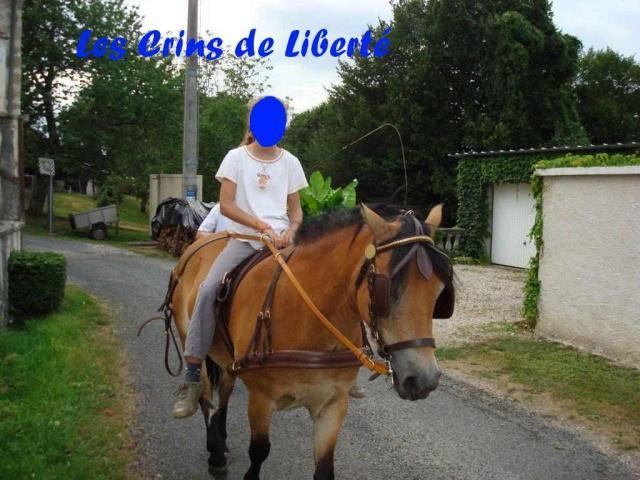 (Dep 63) HOLIDAY (dcd) et VIOLETTE, ponettes sauvées par Sonia R !!! (Fév et août 2012) 606830Ponette7