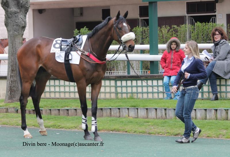 Photos Auteuil 27-04-2016 609775IMG0823