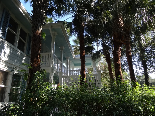 First Visit WDW/Miami/Key West halloween 2013 - Page 4 615707DSC02188