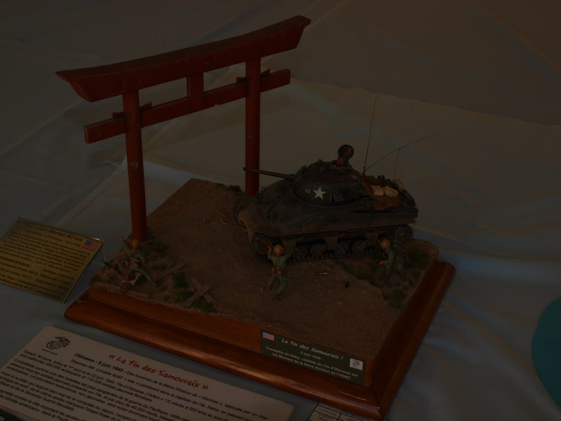 Expo maquette Hyeres le 10 et 11 octobre 616362PA106322Copier