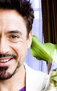 Robert Downey Jr // 200*320 623183Rob8