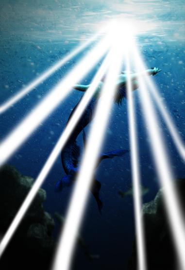 [Photoshop] Créer un décor sous-marin 62328439p