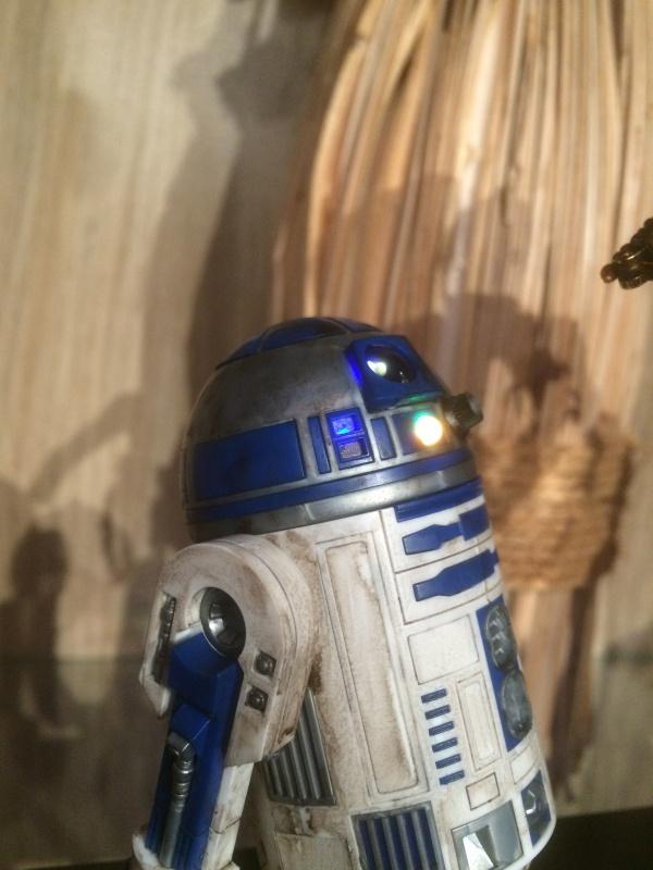 R2-D2 et C3-PO (et R5-D4) 629250IMG0256