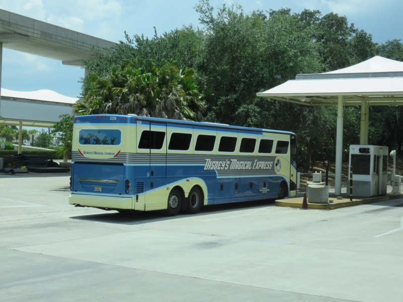 Walt Disney World + Universal Studios + Sea World + Busch Gardens Summer 2014 631011IMG0157
