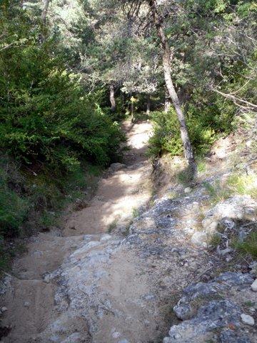 Ballade estivale entre Aveyron et Lozère 631695SDC15437