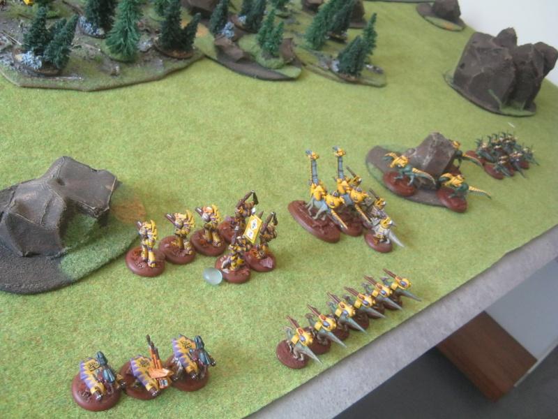 Assaut sur Zebra (campagne narrative) - Page 2 631812IMG0388
