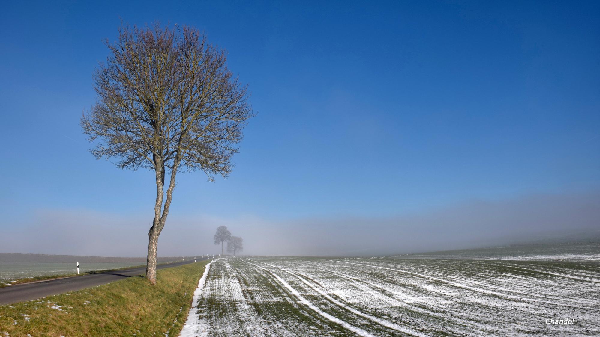 Soleil et brouillard 634182DSC0051