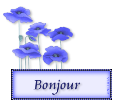 LE REGLEMENT DU FORUM - Avenant n°1 - Page 11 634211bonjour4