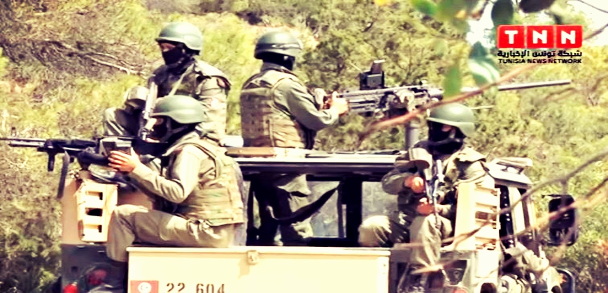Armée Tunisienne / Tunisian Armed Forces / القوات المسلحة التونسية - Page 6 634450Capture