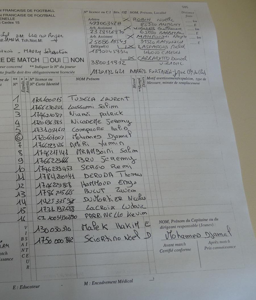 MARSEILLE CONSOLAT 2013 UN PERIPLE EN  REGION TOULOUSAINE !! - Page 4 639114feuil