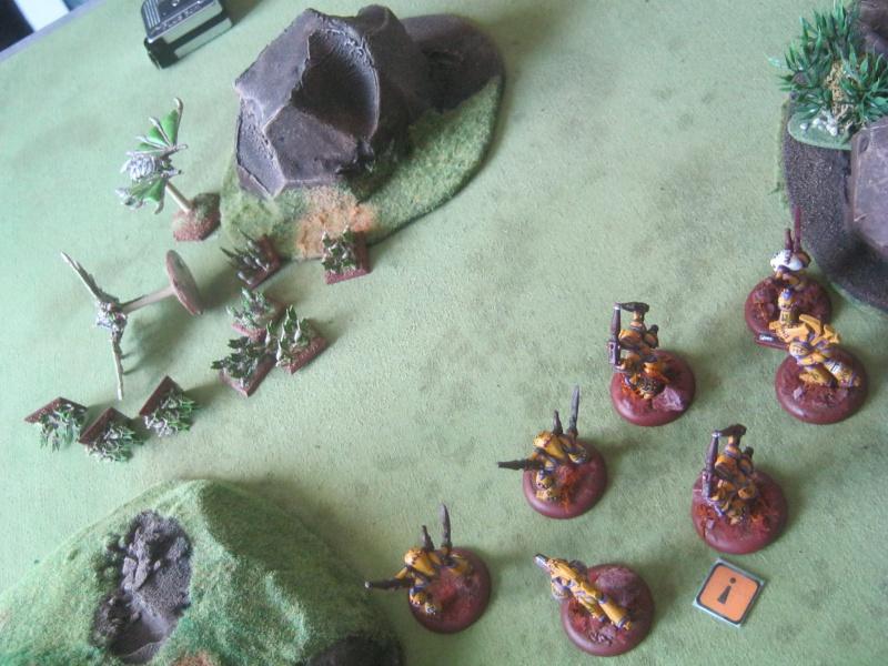 Assaut sur Zebra (campagne narrative) - Page 2 646680IMG0218