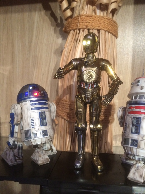 R2-D2 et C3-PO (et R5-D4) 650881IMG0248