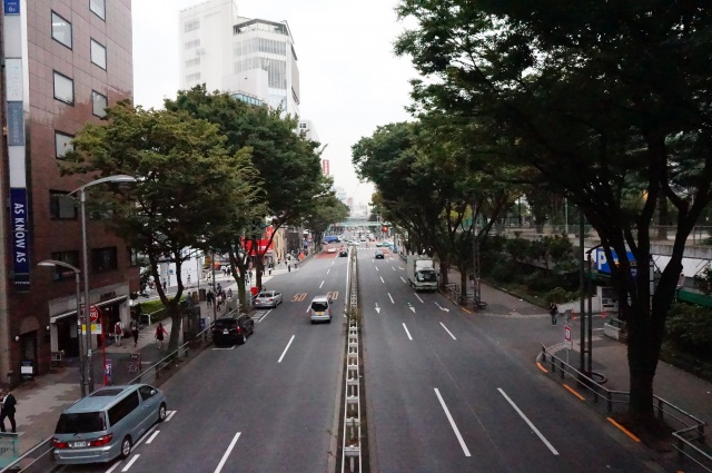 gaijin - Gaijin in Japan: Tokyo - Kyoto - Osaka [Terminé] 658900DSC01253