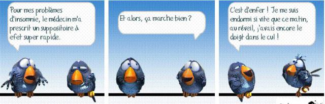 HUMOUR - blagues - Page 5 659381BIRDs