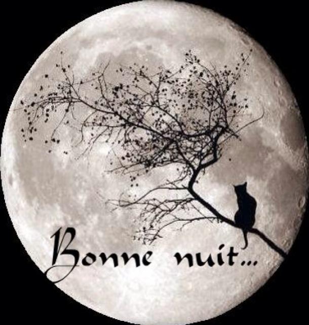 Le Thread du BONJOUR/BONSOIR  les Zanimo's  - Page 18 659468image