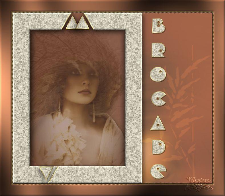 14-Cours Psp-Cadre brocade 663542cours14cadrebrocarde