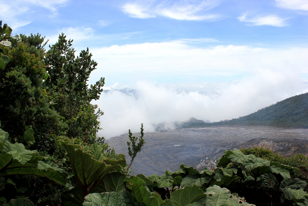 15 jours dans la jungle du Costa Rica - Page 2 665297poas1r
