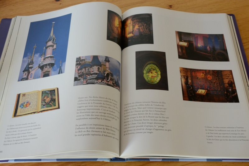 Disneyland Paris : de l'Esquisse à la Création [Nouveau Millénaire - 2002] - Page 3 6706772031