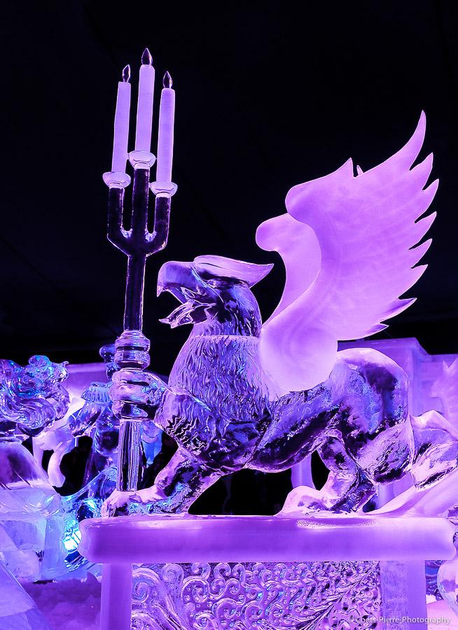 Sculptures sur glace à Bruges 2013: vos photos 670873A012504