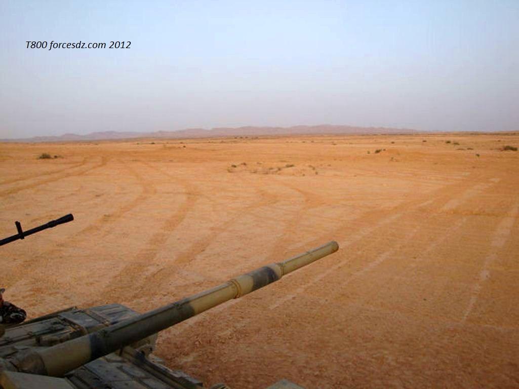 Argelia - Página 2 675896cvdwvn