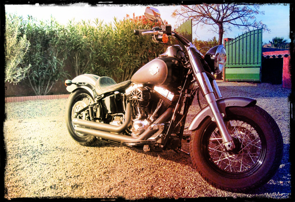 Softail Slim sous tous ses angles ! - Page 3 677805655a