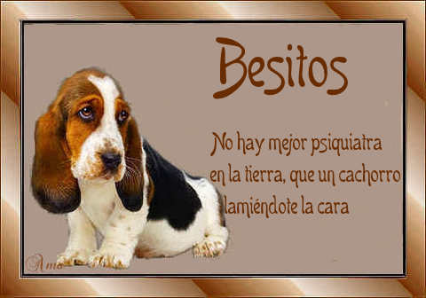 Batata con Frase 677844besitos