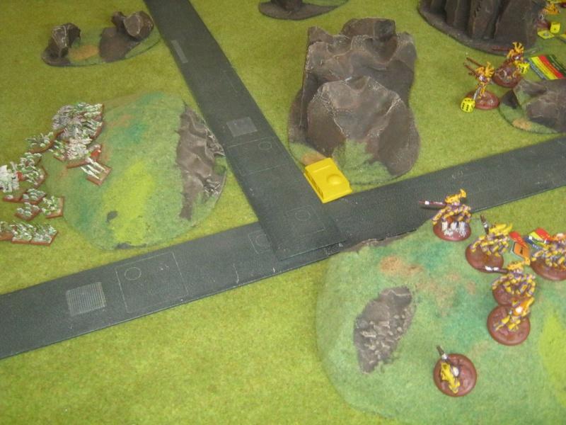 Assaut sur Zebra (campagne narrative) - Page 2 683450IMG0397