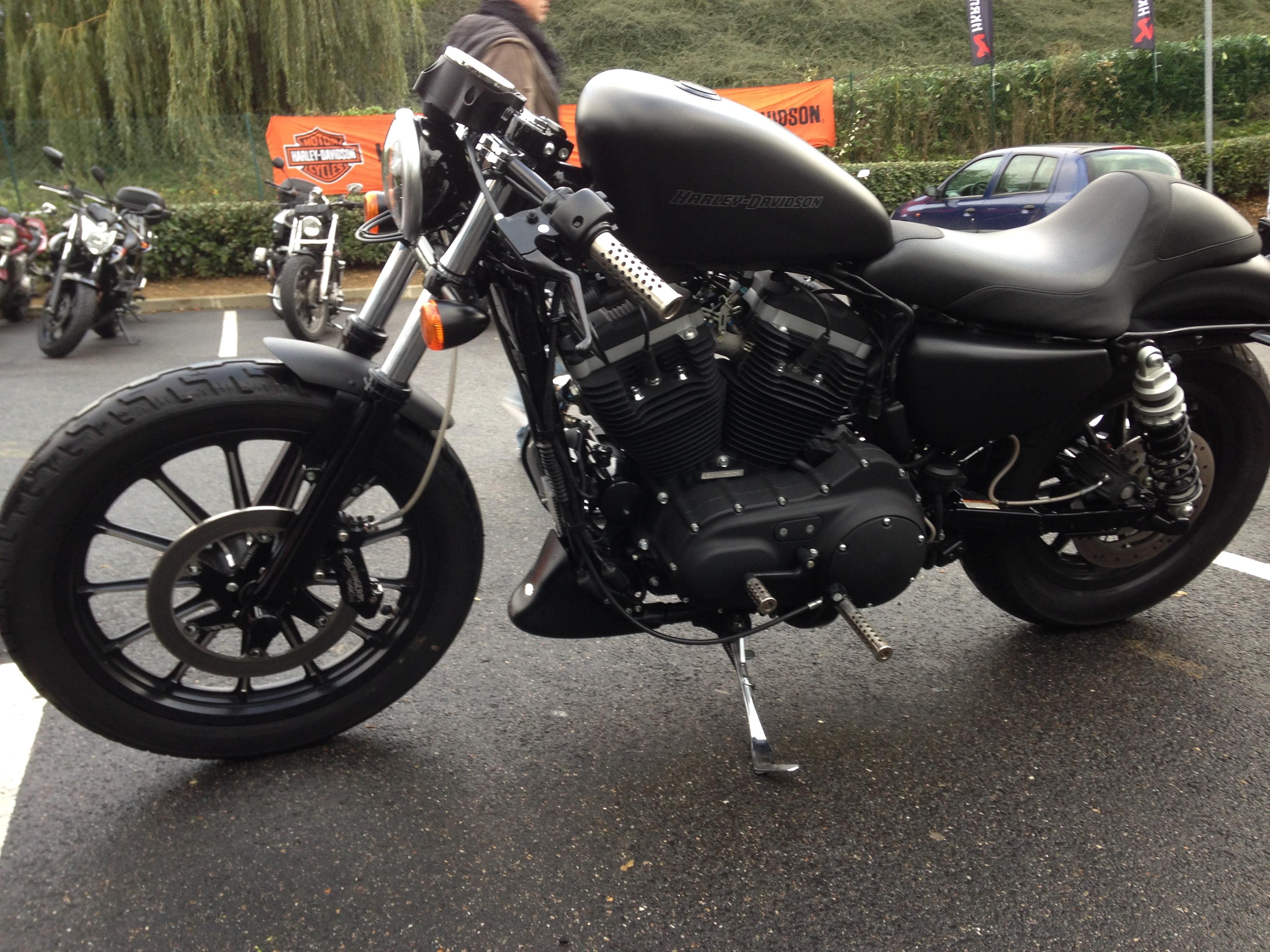 Mon 883 Iron Café Racer 687021IMG0641