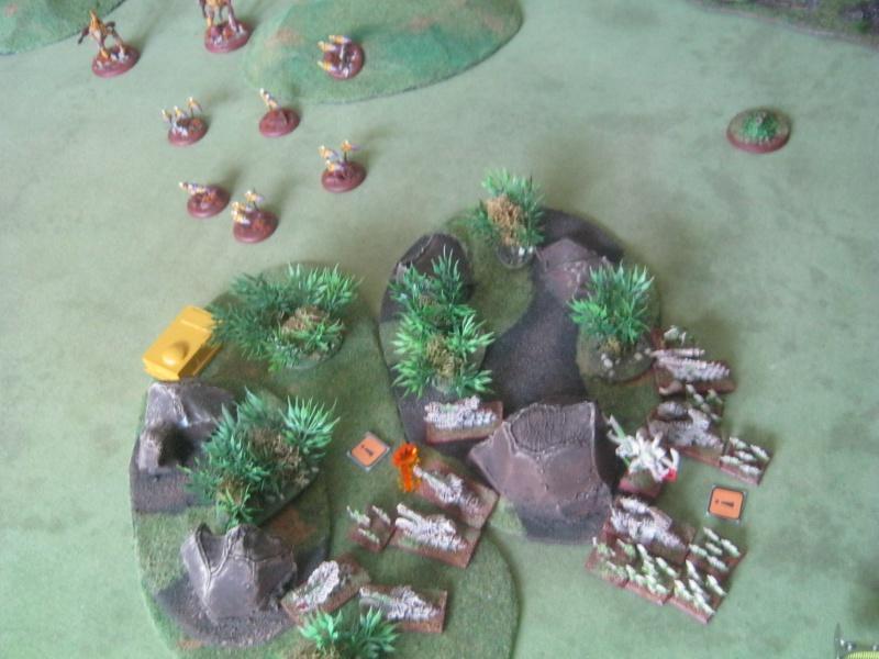 Assaut sur Zebra (campagne narrative) - Page 2 690370IMG0211