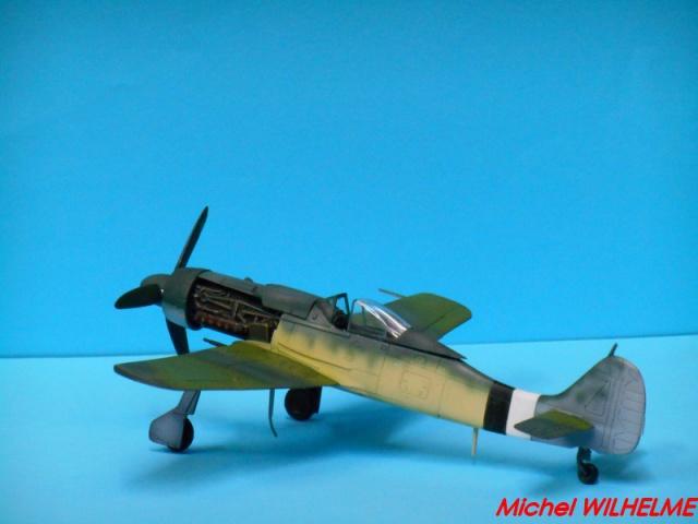 FOCKE WULF 190 D9  kit force of valor 1/72 691613DSCN7527Copier