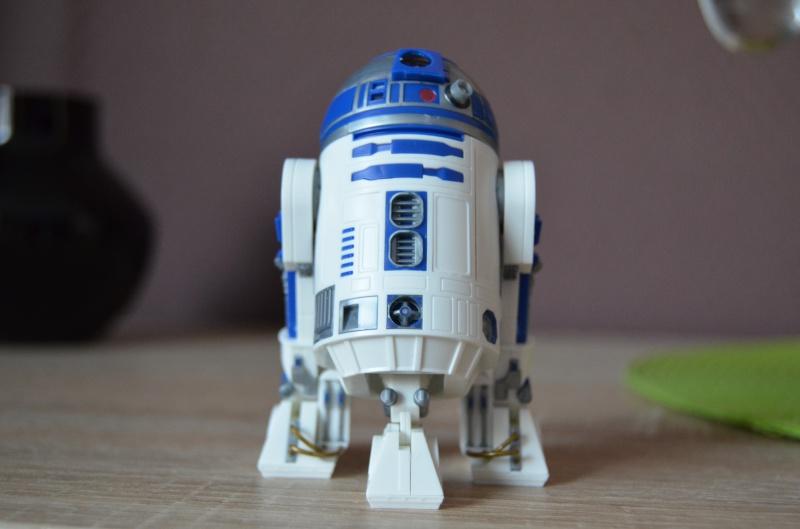 R2 D2 et R4 D4 693320DSC0331