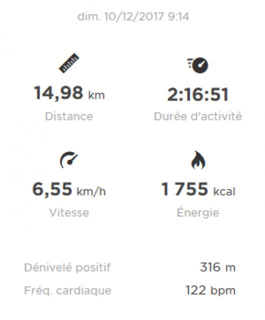 Marche nordique du Haras de Hennebont 694565Hennebont11